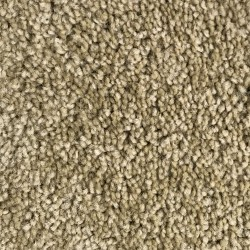 Max 25 - Apartment Grade Carpet