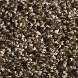 Rave - Apartment Grade Carpet