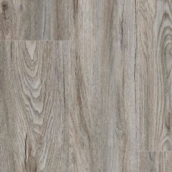 Transcends Collection -  Click Plank