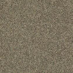 Griffin Texture