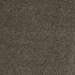 Fairview Taupe