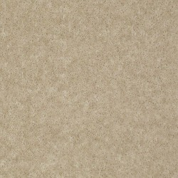 Tinted Taupe