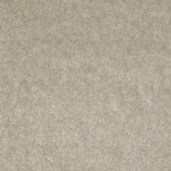 Exquisite Gray