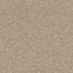 Sand Caste