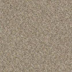 Moonlit Sand