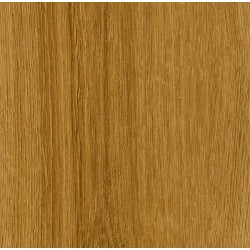 Moduleo Vision - Spring Oak Dryback