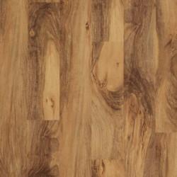 Acacia Natural