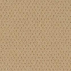 Residential - Berber Carpet