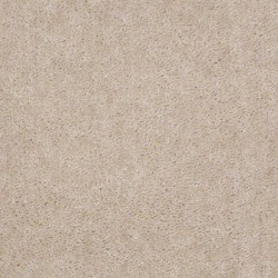 Lightest Taupe