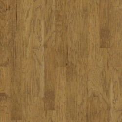 Wild Frontier Hickory