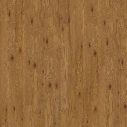 Colonial Oak