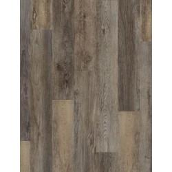 Galathea Oak