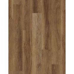 Magellanic Oak