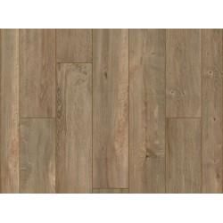 Mesa Verde Oak