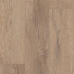 Goldin Oak