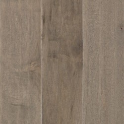 Steel Maple