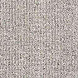 Delightful Dream Anderson Tuftex Carpet Save 30 50 At