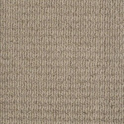 Delightful Dream Anderson Tuftex Carpet Save 30 50 At