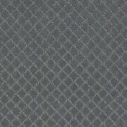 Steel Wool