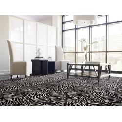 Zebra-Room.jpg